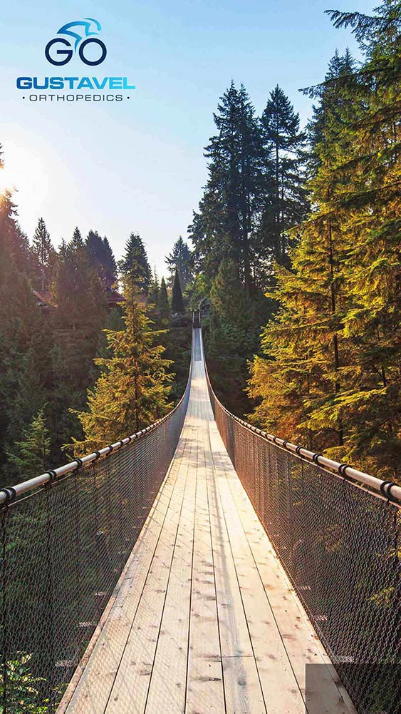 image of a wooden bridge hovering a forest treeline with the Gustavel Orthopedics logo on the top left
